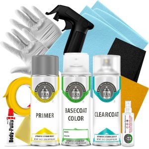 Automotive Spray Paint Clearcoat Primer and Pro Kit