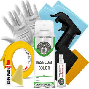 Automotive Spray Paint and Pro Prep Kit